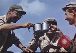 Image of Allied soldiers Philippines, 1945, second 10 stock footage video 65675062351