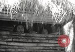 Image of Japanese troops Philippines, 1942, second 8 stock footage video 65675062358