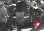 Image of Japanese air operations at Clark Field Philippines, 1942, second 4 stock footage video 65675062361