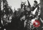 Image of Japanese soldiers Philippines, 1942, second 2 stock footage video 65675062371