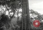 Image of Japanese soldiers Corregidor Island Philippines, 1942, second 10 stock footage video 65675062379