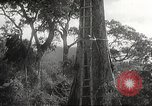 Image of Japanese soldiers Corregidor Island Philippines, 1942, second 11 stock footage video 65675062379