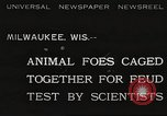 Image of animal foes Milwaukee Wisconsin USA, 1932, second 1 stock footage video 65675062516
