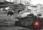 Image of animal foes Milwaukee Wisconsin USA, 1932, second 9 stock footage video 65675062516