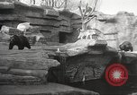 Image of animal foes Milwaukee Wisconsin USA, 1932, second 10 stock footage video 65675062516