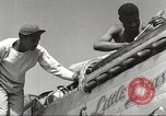 Image of Ground crewmwn servicing P-51s of the 332nd Fighter Group Termoli Italy, 1944, second 12 stock footage video 65675062602