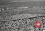 Image of 1st Cavalry Division Texas Sacramento Mountains USA, 1931, second 10 stock footage video 65675062667