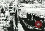 Image of German submarines Germany, 1943, second 8 stock footage video 65675062698