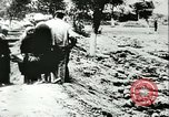 Image of Great Purge victims mass grave Vinnytsia Ukraine Soviet Union, 1943, second 7 stock footage video 65675062699