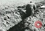 Image of German soldiers Tunisia North Africa, 1942, second 9 stock footage video 65675062709