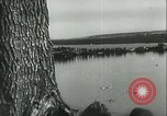 Image of German soldiers at the River Don Russia, 1942, second 11 stock footage video 65675062716