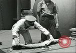 Image of United States Coast Guard United States USA, 1945, second 9 stock footage video 65675062723
