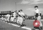 Image of Detroit Tigers baseball team Florida United States USA, 1950, second 11 stock footage video 65675062754