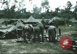 Image of 1st Cavalry troops South Vietnam, 1966, second 6 stock footage video 65675062769