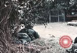 Image of Tet Offensive Saigon Vietnam, 1968, second 9 stock footage video 65675062789
