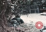 Image of Tet Offensive Saigon Vietnam, 1968, second 10 stock footage video 65675062789