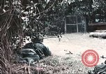 Image of Tet Offensive Saigon Vietnam, 1968, second 11 stock footage video 65675062789