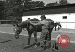 Image of 287th Military Police Company Berlin Germany, 1957, second 7 stock footage video 65675062914