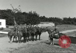 Image of 287th Military Police Company Berlin Germany, 1957, second 8 stock footage video 65675062915