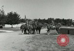 Image of 287th Military Police Company Berlin Germany, 1957, second 8 stock footage video 65675062916
