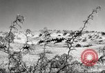 Image of 1st Cavalry Division Fort Bliss Texas USA, 1942, second 7 stock footage video 65675063100
