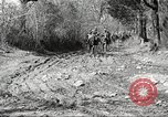 Image of 1st Cavalry Division Fort Oglethorpe Georgia USA, 1942, second 5 stock footage video 65675063108