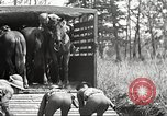 Image of Elements of U.S. 6th Cavalry Division in maneuvers at Fort Olgelthorpe Fort Oglethorpe Georgia USA, 1942, second 11 stock footage video 65675063110