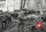 Image of 1st Cavalry Division Salem Oregon USA, 1942, second 6 stock footage video 65675063116