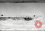Image of 1st Cavalry Division United States USA, 1942, second 1 stock footage video 65675063120