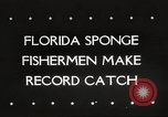 Image of sponge fishing Florida United States USA, 1946, second 1 stock footage video 65675063134