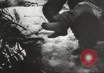 Image of war victims Europe, 1946, second 4 stock footage video 65675063149