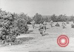 Image of German soldiers Germany, 1941, second 2 stock footage video 65675063160