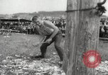 Image of tree-chopping and sawing contest Bavaria Germany, 1967, second 10 stock footage video 65675063266