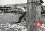 Image of tree-chopping and sawing contest Bavaria Germany, 1967, second 12 stock footage video 65675063266