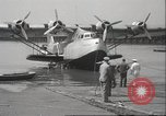 Image of Albatross birds San Francisco California USA, 1937, second 8 stock footage video 65675063622