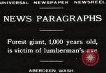 Image of Lumberman Aberdeen Washington USA, 1929, second 2 stock footage video 65675063699