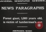 Image of Lumberman Aberdeen Washington USA, 1929, second 10 stock footage video 65675063699