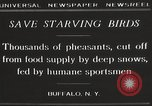Image of nye of pheasants Buffalo New York USA, 1929, second 5 stock footage video 65675063700