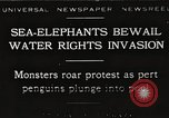 Image of Sea-elephants Copenhagen Denmark, 1929, second 1 stock footage video 65675063703