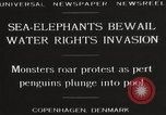 Image of Sea-elephants Copenhagen Denmark, 1929, second 4 stock footage video 65675063703