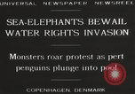 Image of Sea-elephants Copenhagen Denmark, 1929, second 5 stock footage video 65675063703