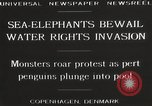 Image of Sea-elephants Copenhagen Denmark, 1929, second 6 stock footage video 65675063703