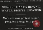 Image of Sea-elephants Copenhagen Denmark, 1929, second 8 stock footage video 65675063703