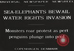 Image of Sea-elephants Copenhagen Denmark, 1929, second 9 stock footage video 65675063703