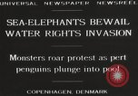 Image of Sea-elephants Copenhagen Denmark, 1929, second 10 stock footage video 65675063703