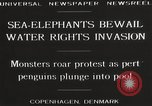 Image of Sea-elephants Copenhagen Denmark, 1929, second 12 stock footage video 65675063703