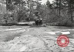 Image of small game hunting United States USA, 1920, second 12 stock footage video 65675063728