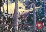 Image of 77th Infantry Division Guam Mariana Islands, 1944, second 9 stock footage video 65675063809