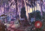 Image of 77th Infantry Division New Britain Papua New Guinea, 1944, second 3 stock footage video 65675063810