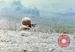 Image of 6th Marine Division machine guns Okinawa Ryukyu Islands, 1945, second 9 stock footage video 65675063817